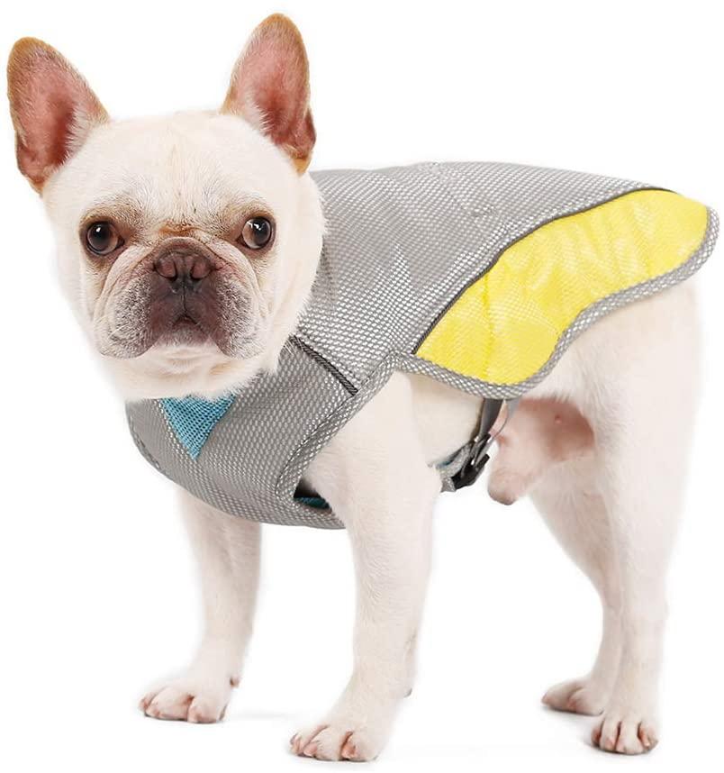 billig kylväst för hund