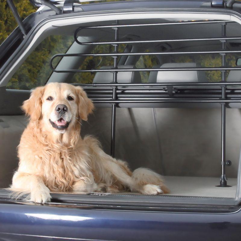 Bäst i test - Lastgaller för hund
